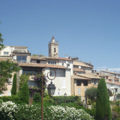 Mougins, a town of gardens and art